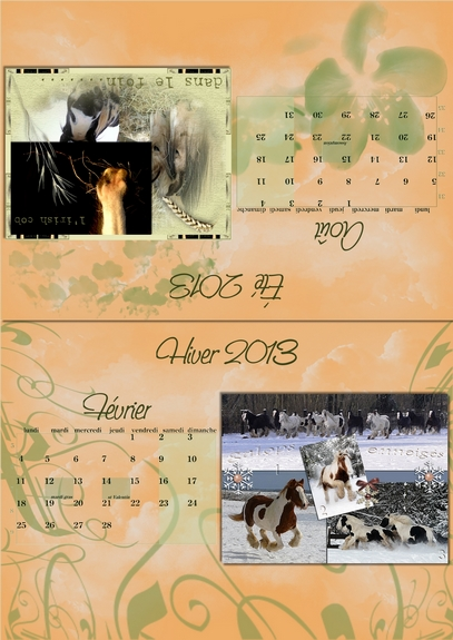 Calendriers PICF 2013 02-0810
