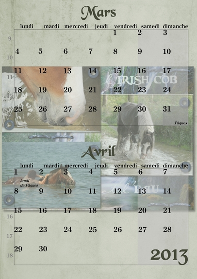 Calendriers PICF 2013 03-04_10
