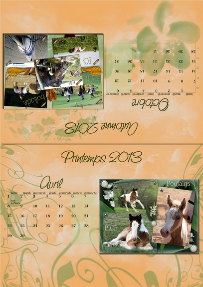 Calendriers PICF 2013 04-1010