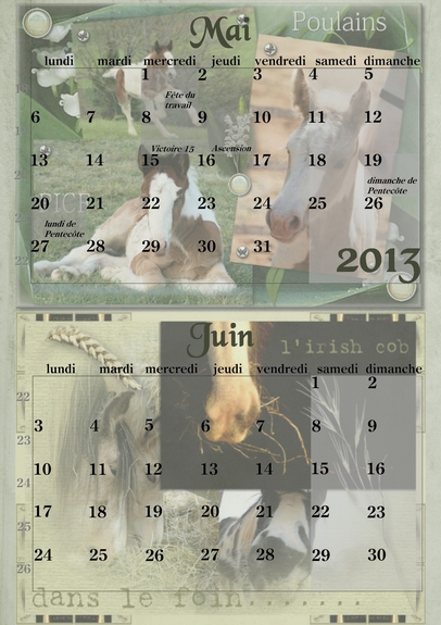Calendriers PICF 2013 05-06_10