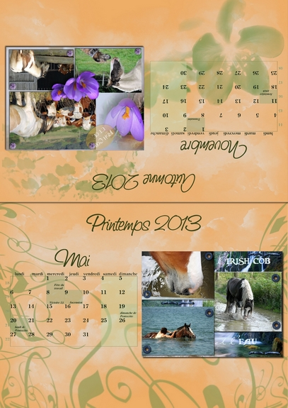 Calendriers PICF 2013 05-1110