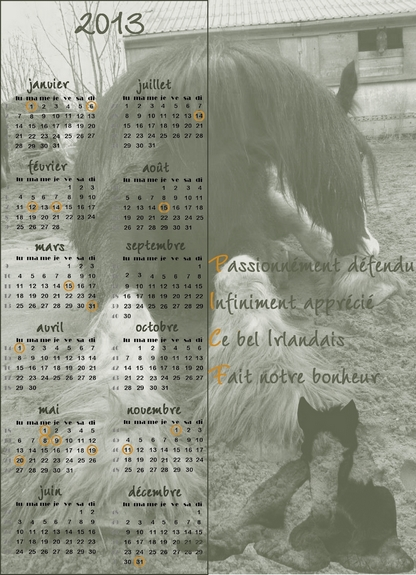 Calendriers PICF 2013 Picf10