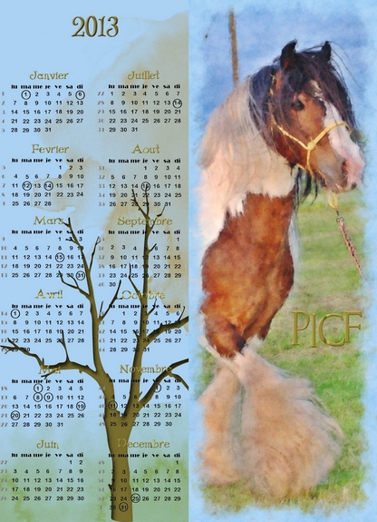 Calendriers PICF 2013 Picf_a12