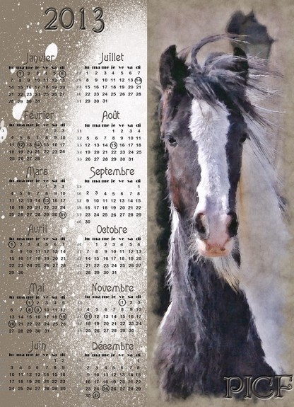 Calendriers PICF 2013 Picf_v10