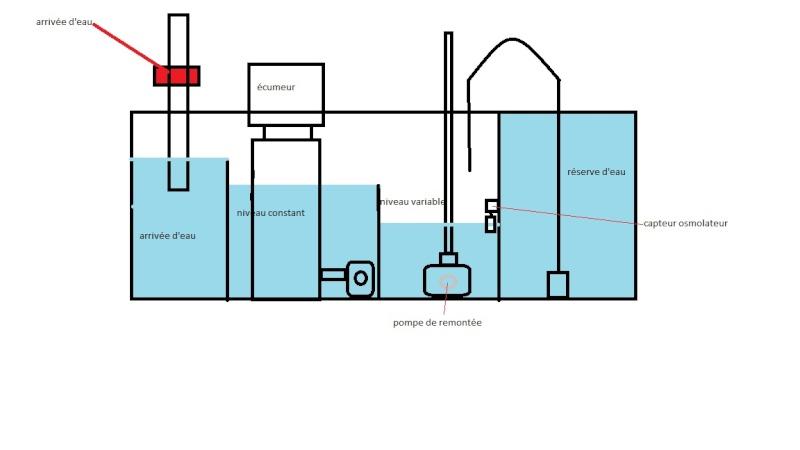 """Mon bac de 430 litres avec décante """"Marin"""" - Page 5 Shama_10"""