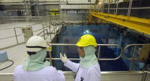 Catástrofe nuclear en Japón - Página 10 13106710