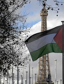 Solidaridad con el pueblo palestino - Página 5 P018_f34