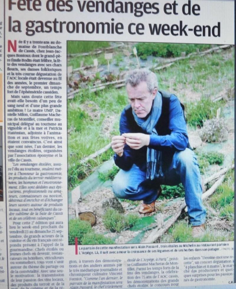 CASSIS PARADIS SUR TERRE....VRAIMENT - Page 5 P1220413