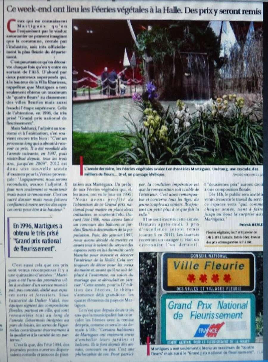 LA VEGETATION MEDITERRANEENNE - Page 6 P1260044