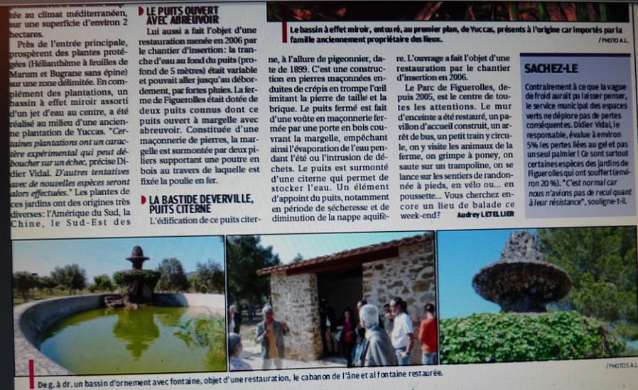 LA VEGETATION MEDITERRANEENNE - Page 6 P1280718