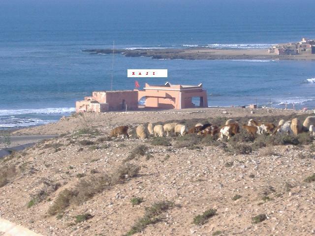 chleuhs - La plage des Chleuhs Dscf1210