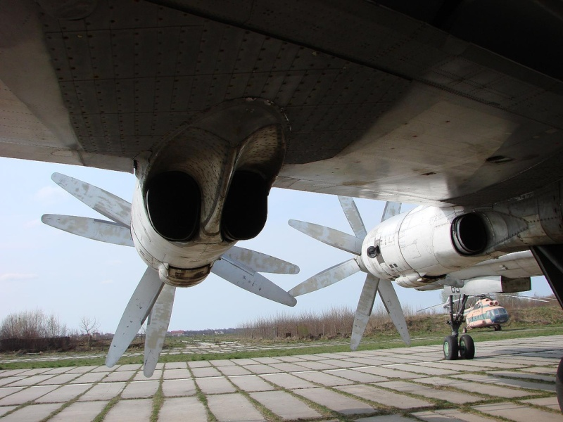 "Tupolev Tu-142 ""Bear"" (Para Fiorenzo) 45972511"