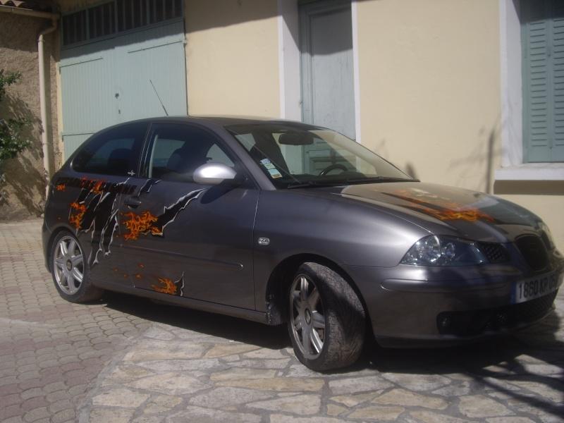 Peinture sur ma voiture Imgp0028