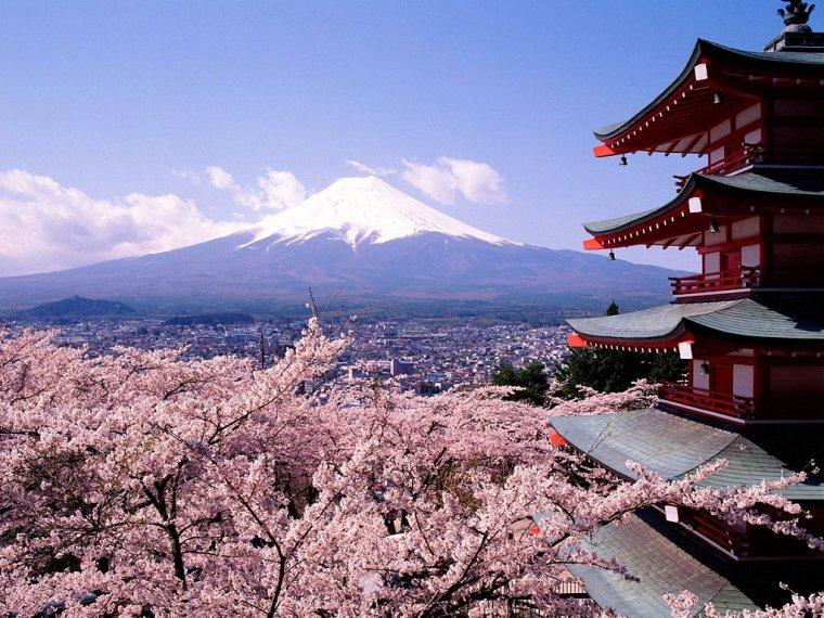 Ma vie au Japon : vos questions ? Japon10