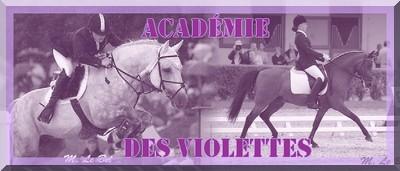 Académie des Violettes Bannie10