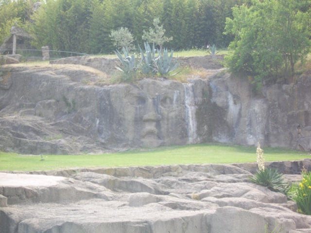 Le Jardin de Saint Adrien à Servian Sv100927