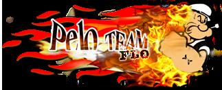 Logo PELO TEAM Pt-flo10