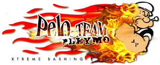 Logo PELO TEAM Pt-ple10