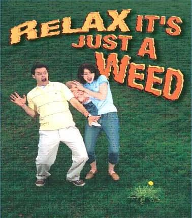 Bonus du cabhélitour 2008 - Page 2 Relax11