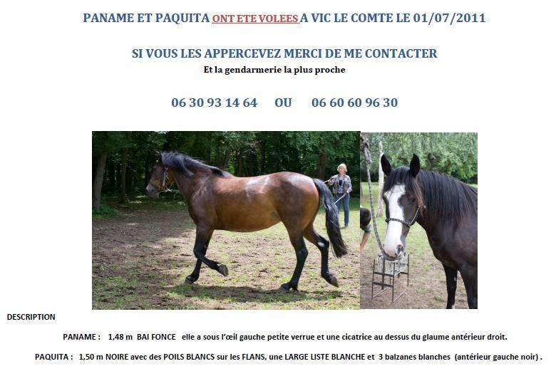 2 juments volées à Vic-le-Comte (63) le 1/07/11 Jument10