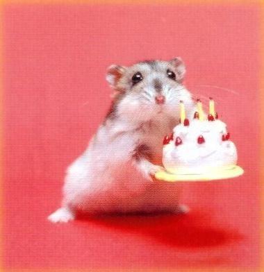 Feliz Cumpleaños JazZ Untitl10