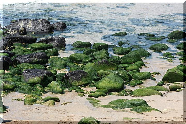 sur la plage 0217