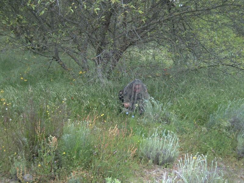 Fotos 8 de junio..comparativo woodland, flecktarn y multicam Pict0021