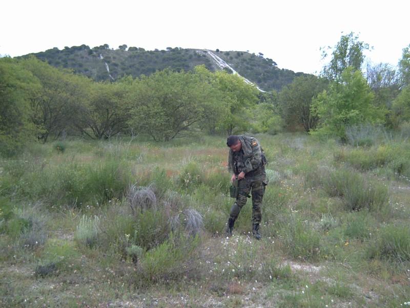 Fotos 8 de junio..comparativo woodland, flecktarn y multicam Pict0026