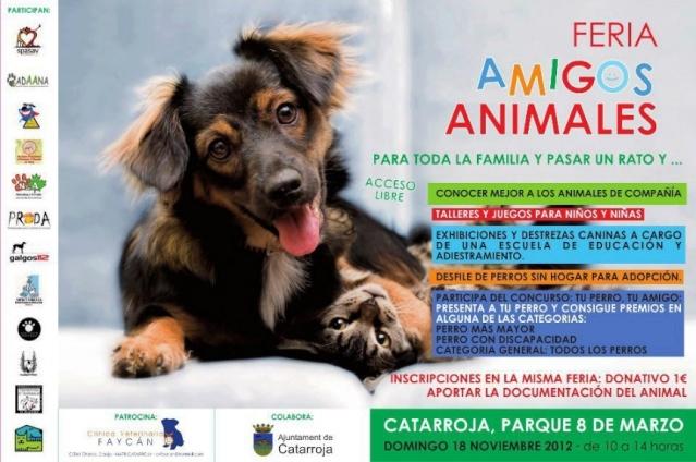 Feria de asociaciones en Catarroja, Valencia. Jd10