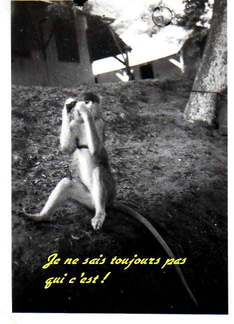 [LES B.A.N.] DAKAR BEL-AIR et OUAKAM - Page 7 Le_sin15