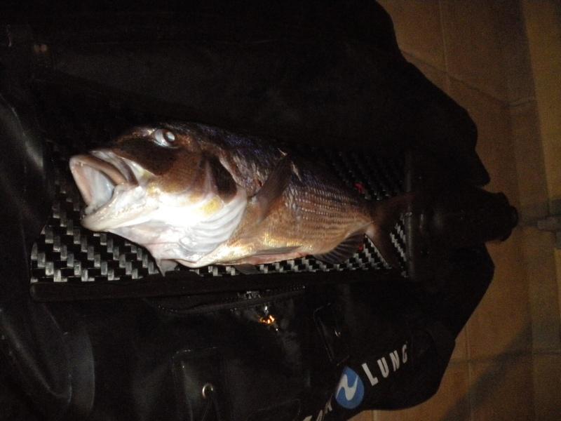 Petit poisson deviendra grand... Dscn0710