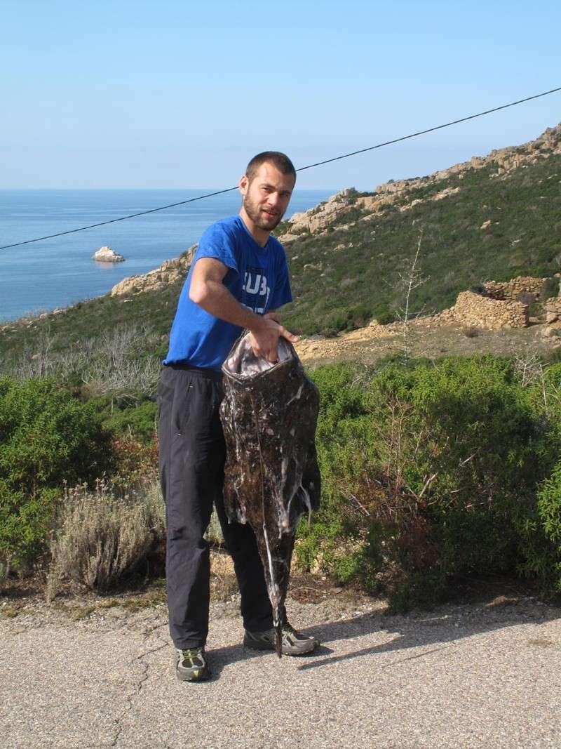 Pesca Balanina Img_0510