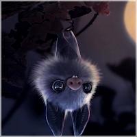 Déambulation nocturne Bat10