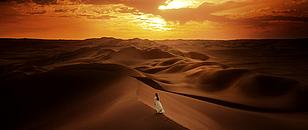 Le désert de Sulmi Ocea110