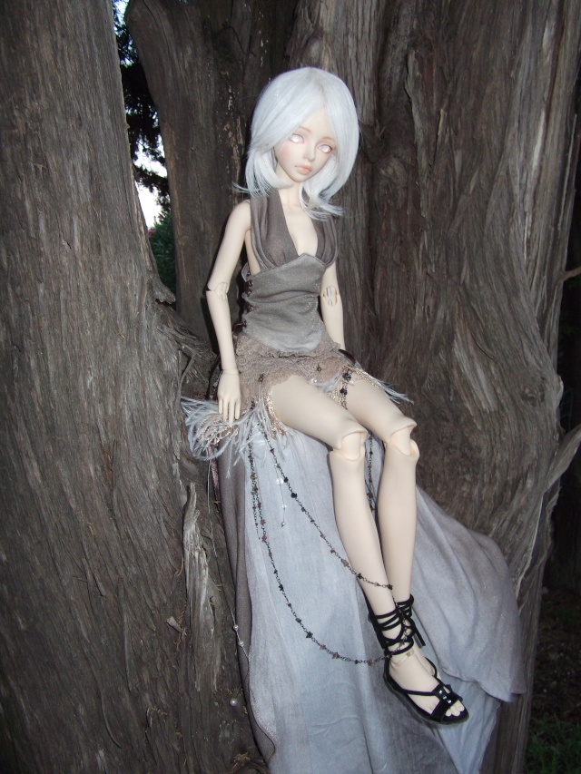 (Kalhan) On trouve des drôles de choses dans les arbres ! Dscf9412