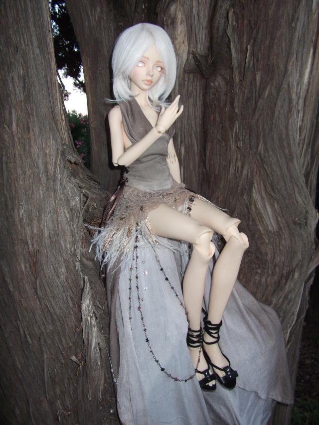 (Kalhan) On trouve des drôles de choses dans les arbres ! Dscf9413