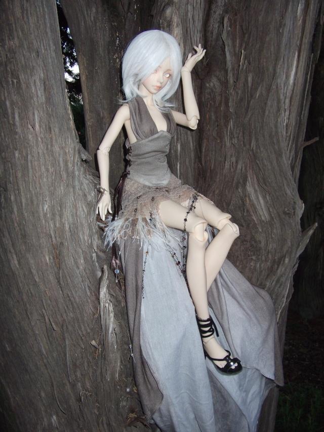 (Kalhan) On trouve des drôles de choses dans les arbres ! Dscf9418