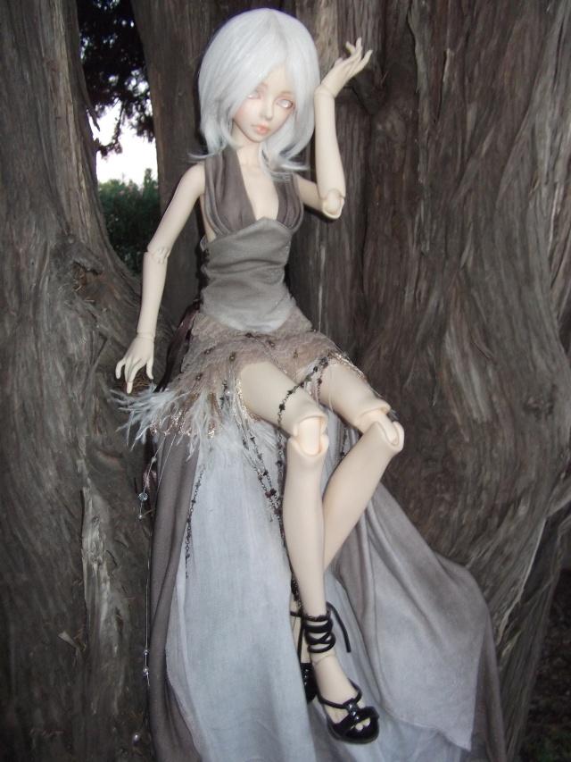 (Kalhan) On trouve des drôles de choses dans les arbres ! Dscf9420
