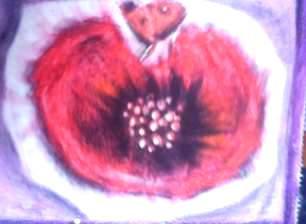 sibel pelin Payyu - Sayfa 3 Res30464