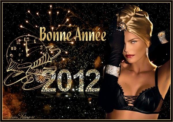BONNE ANNEE 2012 F947f110