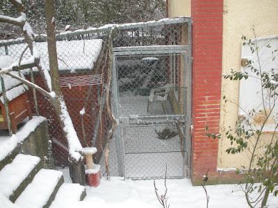 SOS Familles d'Accueil ''grand froid'' Dscn5110