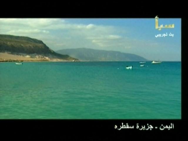 اليمن السعيد (سقطرة) 3310