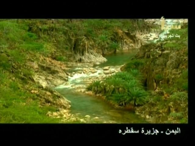 اليمن السعيد (سقطرة) 3810