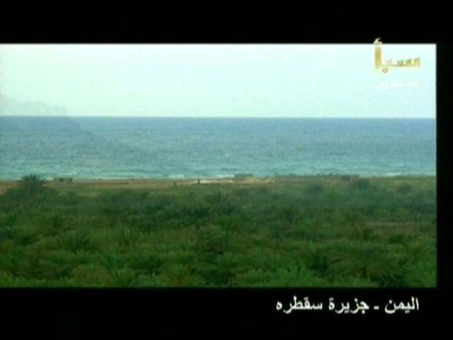 اليمن السعيد (سقطرة) 4310