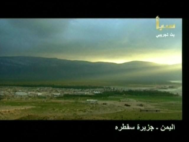 اليمن السعيد (سقطرة) 6010