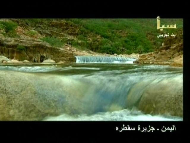 اليمن السعيد (سقطرة) Aaa10