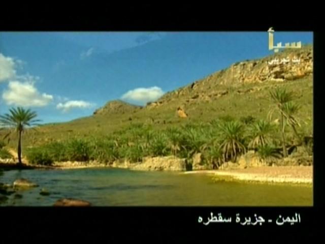 اليمن السعيد (سقطرة) Ss12