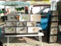 un marché aux animaux (tous les dimanches) Dsc01563