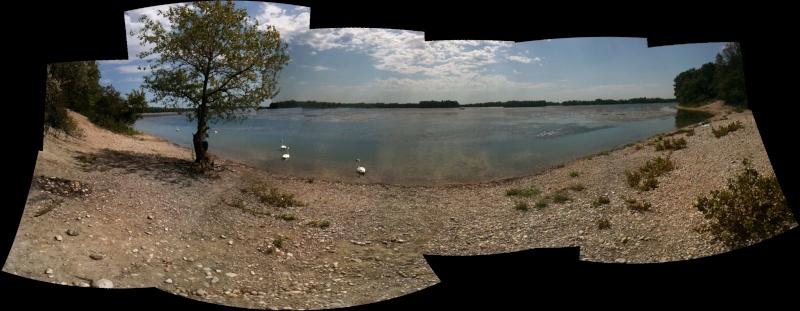 Vive les algues à Miribel! Panora10