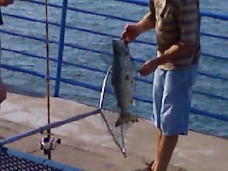 Pasha Lake-Canadian Wilderness Fishing 07180812